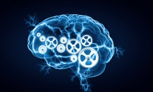how to become a cognitive psychologist education salary