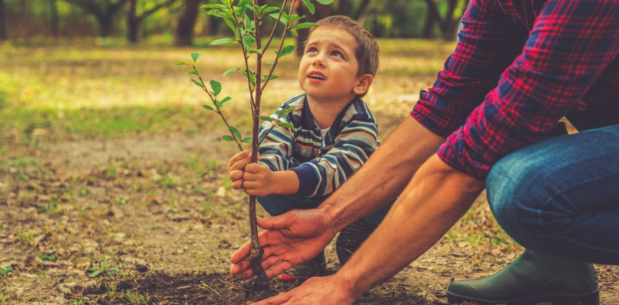Child and Developmental Psychology Careers