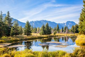 Becoming A Social Worker In Wyoming Licensing